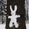 зима заяц