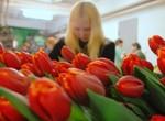 Международный женский день: история и традиции