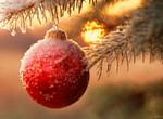 С Новым годом наших читателей поздравили творческие люди Харькова