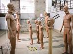 Онлайн-выставка «Площадь Свободы» обновилась
