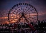 «Уличный Харьков» на день окажется в парке Горького