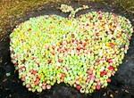 Под Харьковом пройдет «яблочный» фестиваль
