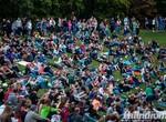 Харьковчане таки будут смотреть кино под открытым небом
