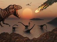 Динозавры вымерли от длительного и жуткого холода