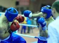 В парке Горького завтра будет публичный турнир по боксу