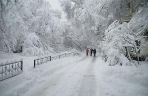 Харьков засыплет снегом: мэрия просит водителей не парковаться на обочинах
