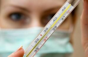 Харьковчан продолжают атаковать грипп и ОРВИ