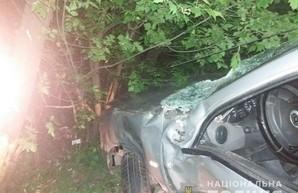 В Харькове в ДТП погиб водитель иномарки (ФОТО)