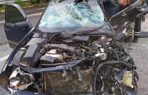 Под Харьковом тройное ДТП с участием рейсового автобуса: погибли два человека (ФОТО)