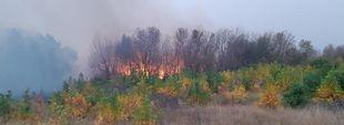 Под Харьковом спасатели ликвидировали масштабные пожары (ФОТО)