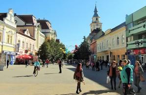 Новый скандал на Закарпатье: учителей-венгров наказали за участие в выборах от украинских партий