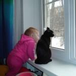 Современные «маугли»: пятилетнюю девочку воспитали собаки и кошки