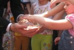 В Парке Горького посадили хрустальное семечко, из которого вырастет новый Диснейленд