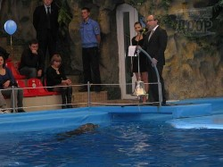 Крупнейший дельфинарий Восточной Европы будет лечить харьковских детей