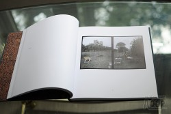 Презентация книги Миши Педана
