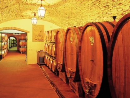 Invino представляет шедевры итальянских виноделов
