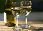 В In Vino пробовали экслюзив из Новой Зеландии