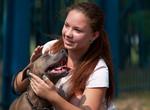Харьковскому приюту для животных нужны волонтеры