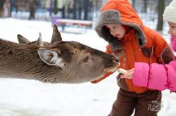 В Харьковском зоопарке начнется реконструкция