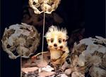 Кукольный театр поучаствует в международном конкурсе плакатов