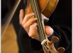 Праздничные концерты дадут к Новому году в филармонии