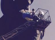 Милиция ищет художников, раскрасивших памятник Солдату