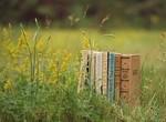 Харьковская Free space library приглашает на литературный вечер