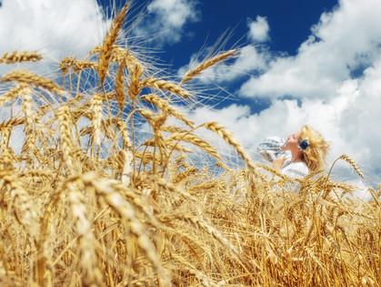 Погода на выходные, 26-27 июля: в Украину пришла жара