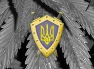 Аваков ликвидирует ОБНОН