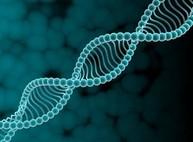 Ученые перепрограммировали ДНК человека, используя слова и частоты