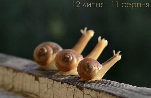 Ко Дню фотографа в Харькове открывается выставка