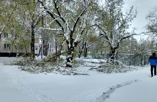 Завтра Харьков может засыпать снегом