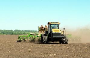 Старт посевной на Харьковщине: В этом году под яровые отвели почти 200 тысяч гектар