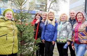 Светличная взяла участие в высадке 450 деревьев на Харьковщине