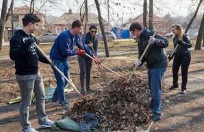 Харьковчан приглашают выйти на субботник