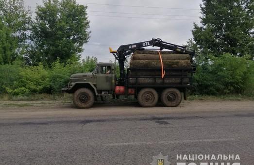 Харьковские полицейский продолжают отлавливать «черных лесорубов» (ФОТО)