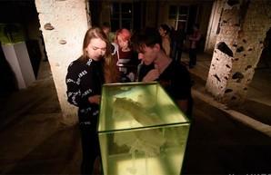 Необычный арт-объект Биеннале оценили харьковские экоинспекторы (ФОТО)