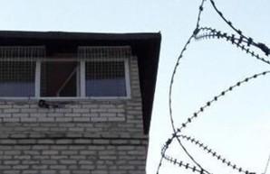 Необычные сухари пытались пронести в колонию на Харьковщине (ФОТО)