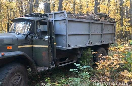 Леса Харьковщины снова атакуют «черные лесорубы» (ФОТО)