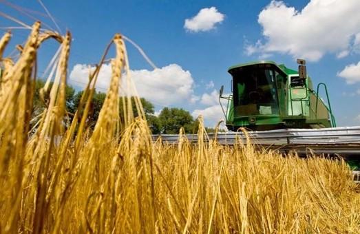 Харьковщина вышла в лидеры по сбору пшеницы