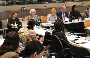 Светличная выступила на 74-й сессии Генеральной Ассамблеи ООН