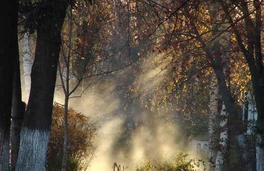 Харьковчане дышат опасным воздухом