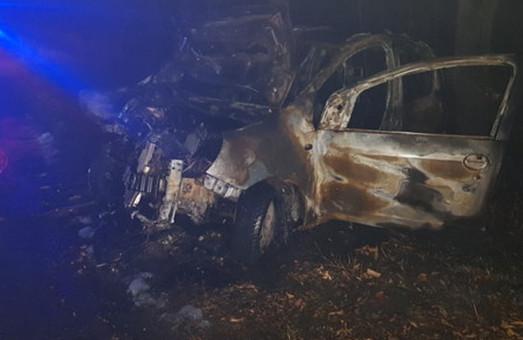 Жуткая авария под Харьковом: машина с ребенком влетела в дерево и загорелась (ФОТО)