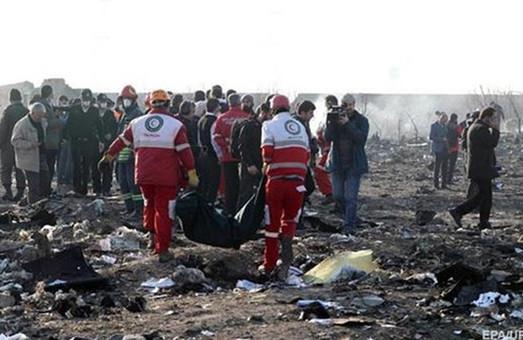 Украинский самолет потерпел крушение в Иране: все пассажиры и экипаж погибли (ФОТО, ВИДЕО)