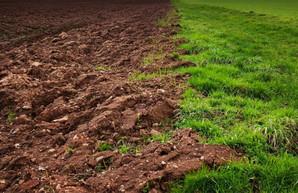 Прокуратура намерена отсудить у фермера землю за 4 миллиона