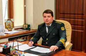 Сыса – всё: Очищение лесной отрасли Украины началось с Харькова