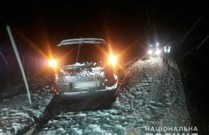Под Харьковом иномарка насмерть сбила пешехода (ФОТО)