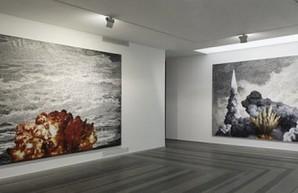 В Польше открылась выставка харьковских художников