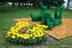 В центре Харькова появились новые цветочные фигуры (ФОТО)