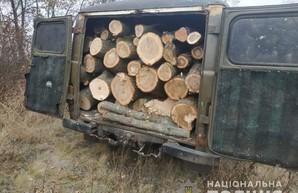 На Харьковщине полицейские поймали очередного «черного лесоруба» (ФОТО)